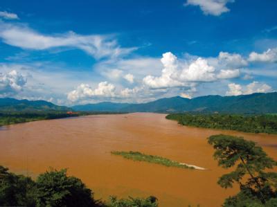 плотины угрожают гигантским рыбам Меконга