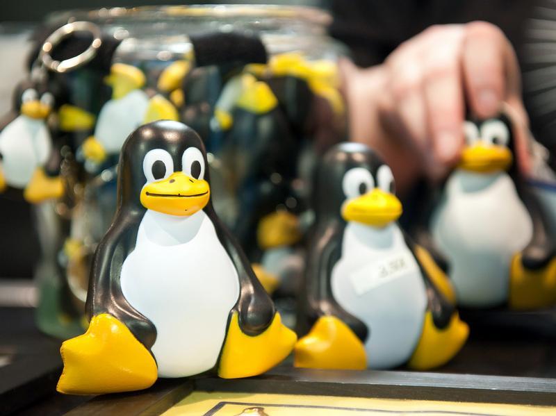 Linux празднует 20-ти летний день рождения