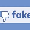 AfD-Wähler fallen besonders oft auf Fake News herein