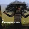 VR Forschung: Bedrohte Natur als virtuelles Bild