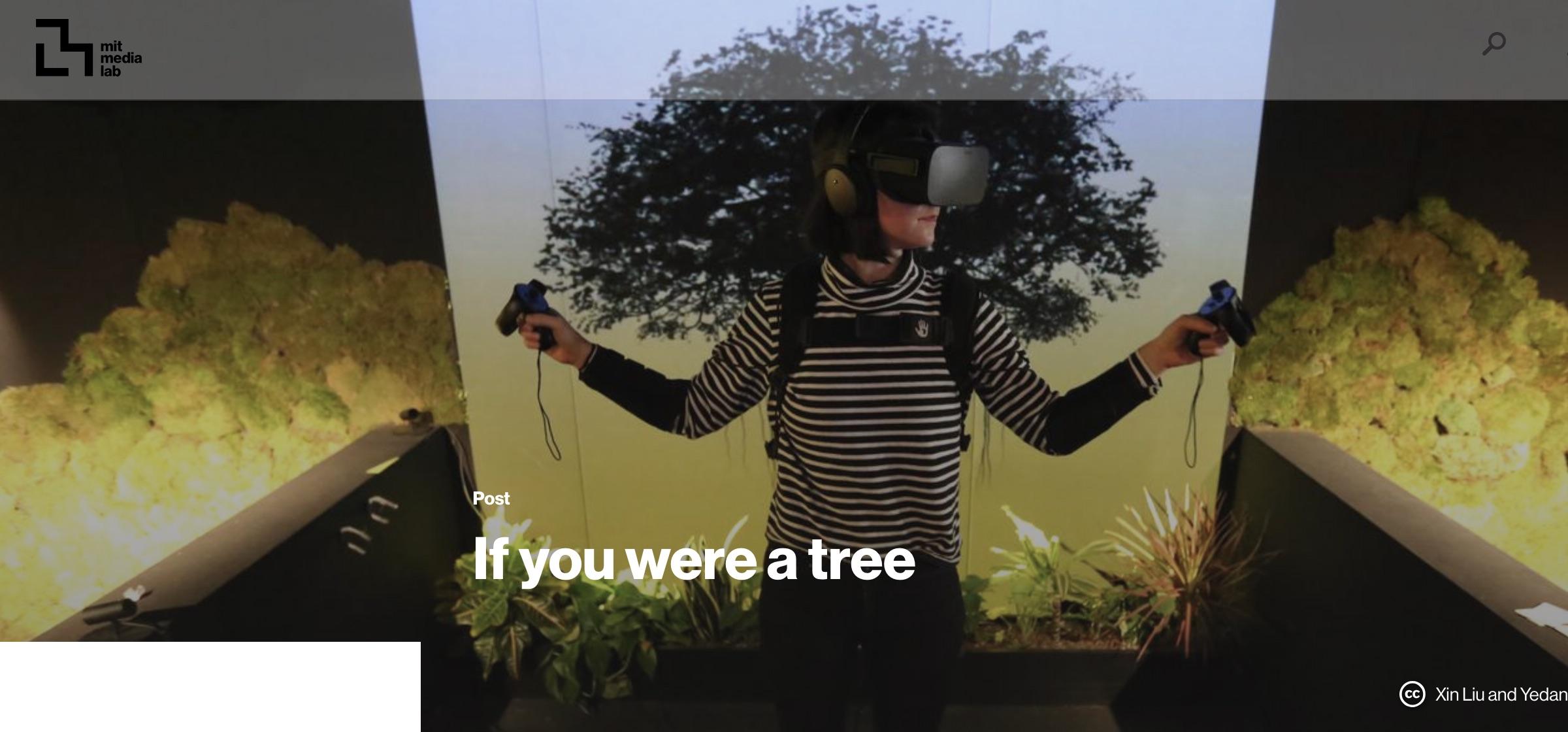 VR Forschung MIT