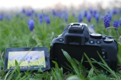 Nikon D5600 DSLR Hands-On